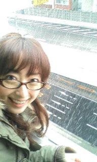 ゆき!雪!!